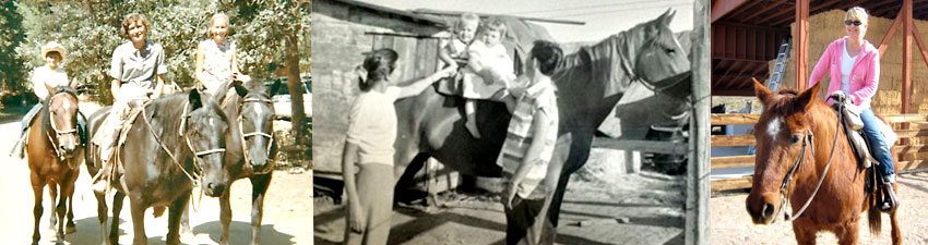 photo header horseback